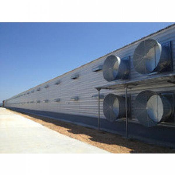 whole low cost poultry farming equipment and chicken house steel structure shed building in china #1 image