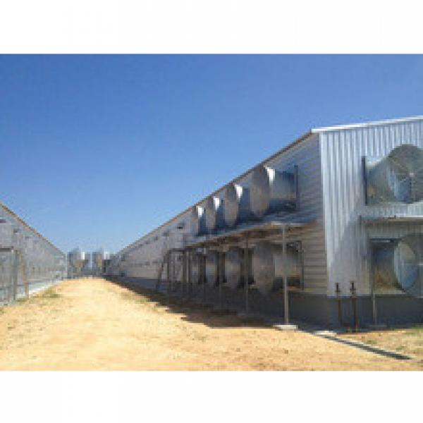 high quality modern leading prefab farm poultry chicken house with automatic equipment by China poultry house manufacturer #1 image