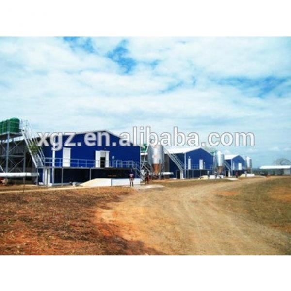 Steel structure chicken house(pheasantry) #1 image