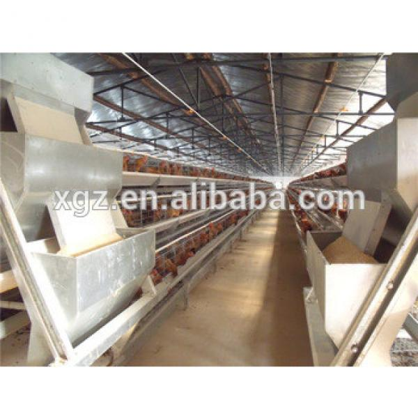 Chicken egg poultry farm construction #1 image