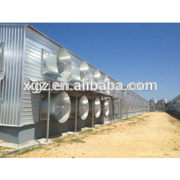 Steel structure automatic layer chicken poultry shed #1 image