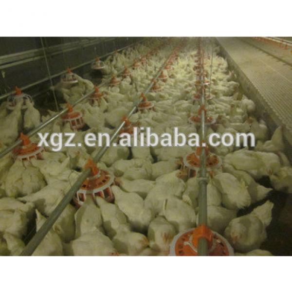 steel structure warehouse used for chicken eggs #1 image