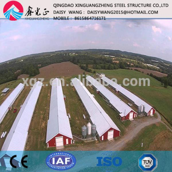 Prefab steel chicken rearing house and equipment supply and design #1 image