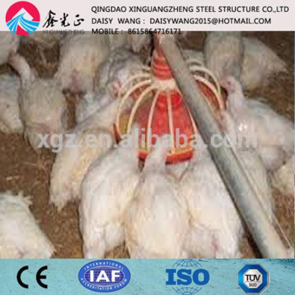 One-stop service full automaticchicken rearing house and equipment #1 image