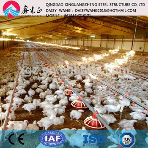 Modern rearing equipment and steel poultry house #1 image