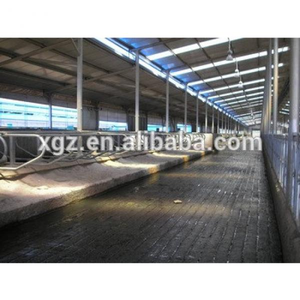 Steel structure Cow shed #1 image