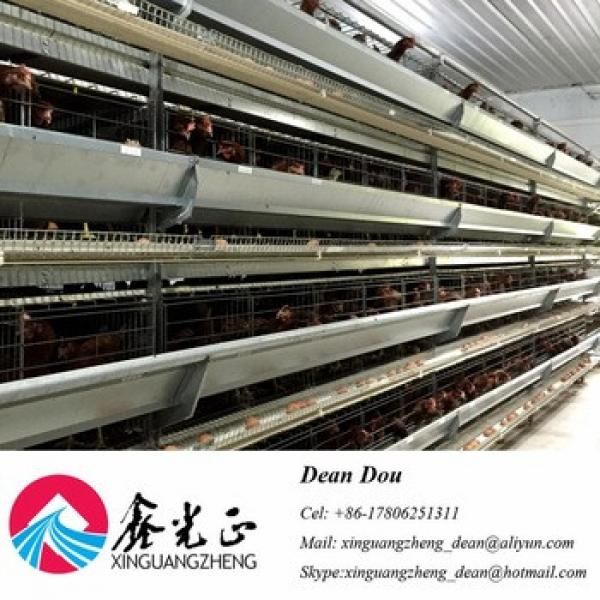 Auto-Control Machine Steel Structure Poultry Farm Chicken House Manufacturer #1 image