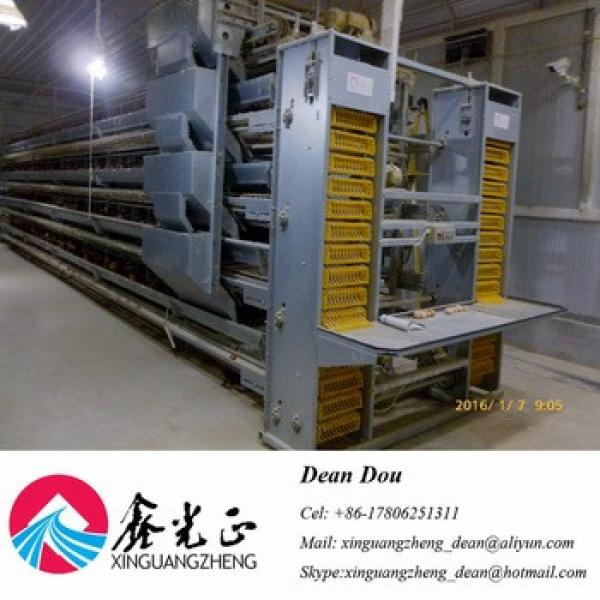Automatic Equipment Building Galvanized Steel Structure Poultry House Drawing Manufacturer #1 image