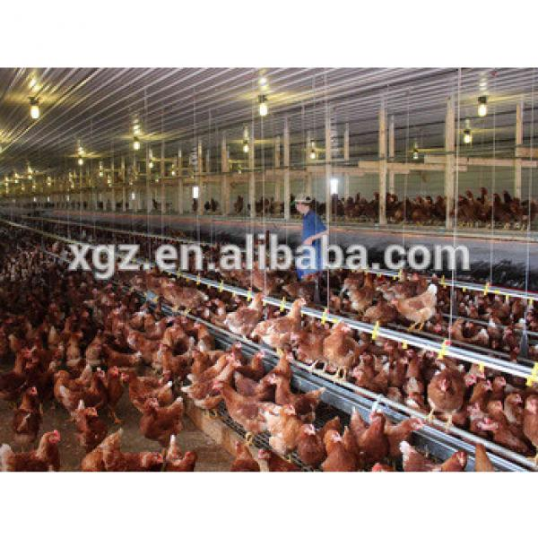 cheap steel chicken egg poultry farm broiler, layer chicken house #1 image