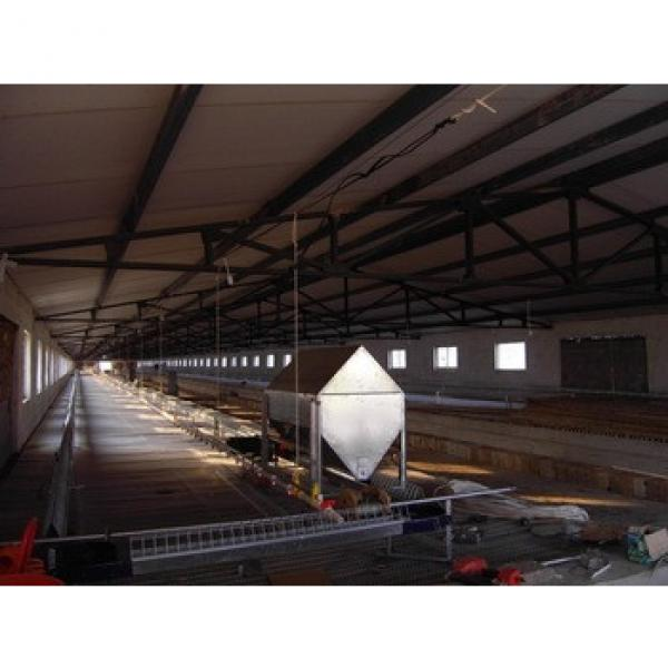 Light Steel Frame Commercial Prefab Poultry Farm Construction Building #1 image