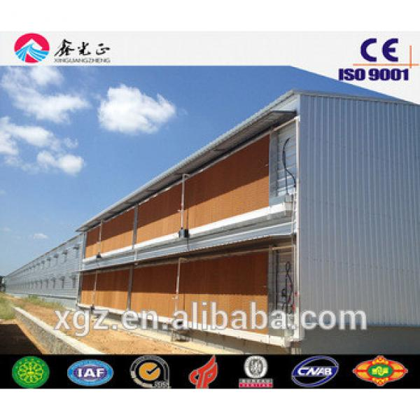 Hot sale poultry farm construction,Steel structure chicken house including poultry equipments #1 image
