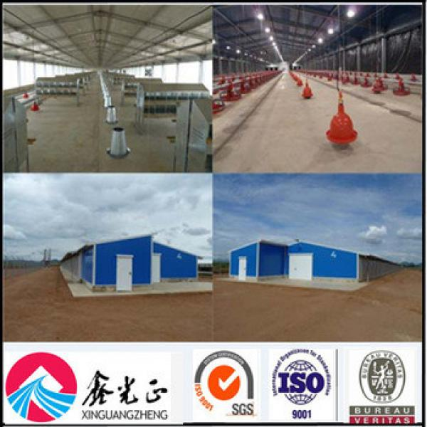Construction structural chicken farm building for steel chicken poultry house #1 image