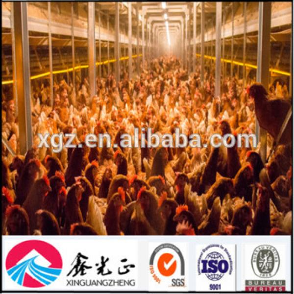 Prefabricated modular sale low cost large span light steel frame industrial chicken house #1 image