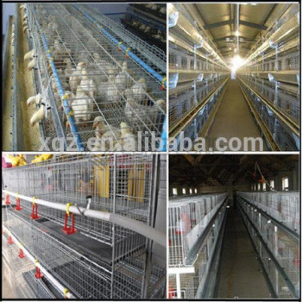 Above 95% egg production Chicken battery cage design for poultry farm #1 image