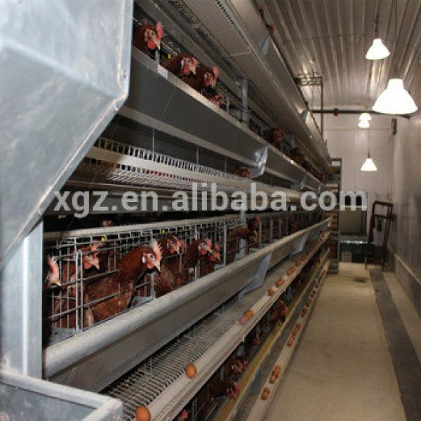 design layer chicken egg poultry farm form china #1 image