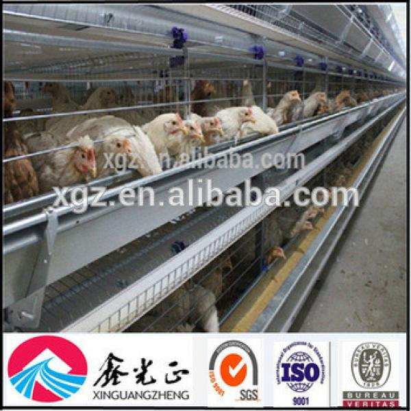 Best price automatic layer egg chicken cage poultry farm house design for Algeria #1 image