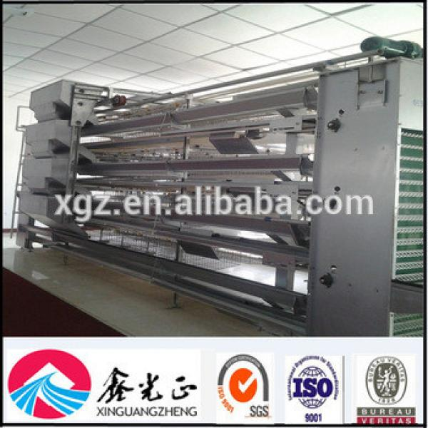 Professional Design Chicken Egg Poultry Farm #1 image