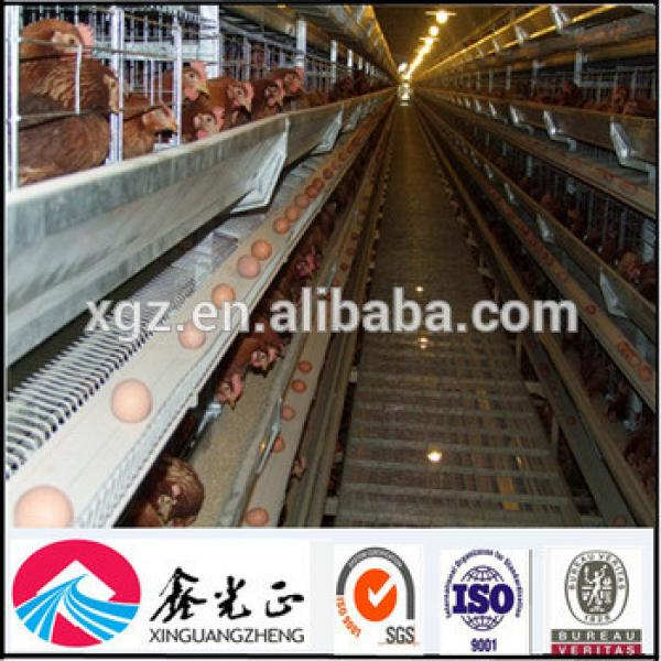 Perfect steel structure layer chicken shed #1 image
