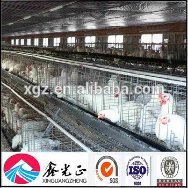 Economical poultry layer chicken battery cage/chicken house #1 image