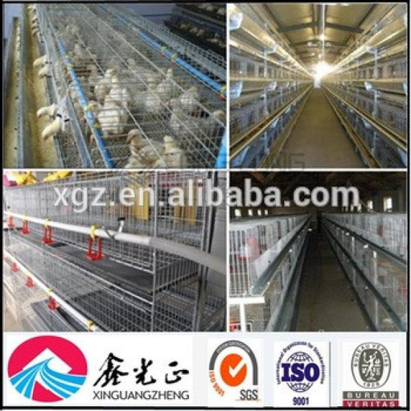 Hot sale automatic egg chicken house design for layers #1 image