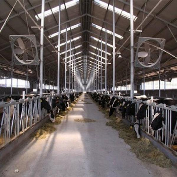 Advanced Automated Steel Structure Cattle Ranch In Australia #1 image