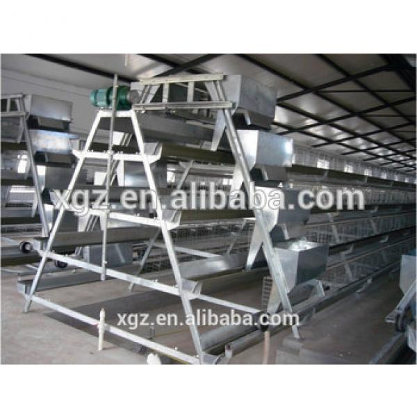 50000 birds prefabricated layer house and A type cage equipment #1 image