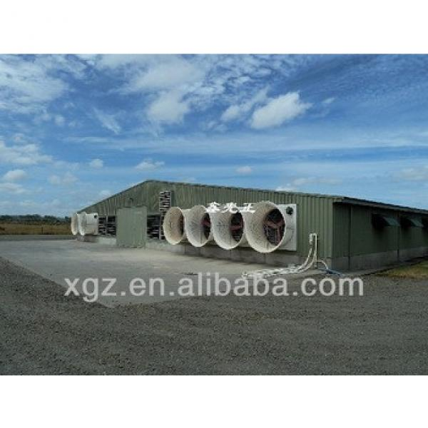 commercial chicken shed with automatic equipment for poultry farm #1 image