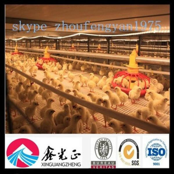 design automatic poultry farming equipment for broiler breeder chicken #1 image