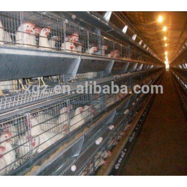 design High quality Automatic used poultry battery cages for sale #1 image