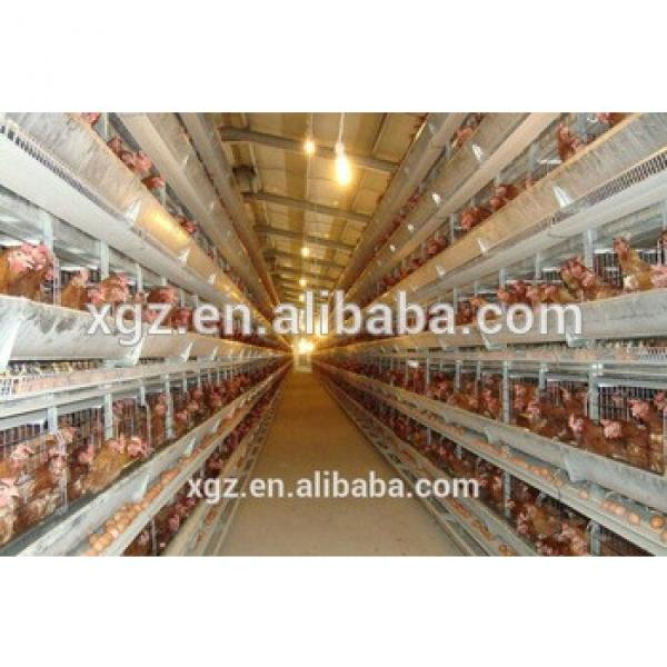 Hot-selling full-auto vertical lage-scale egg chicken house design for layers #1 image