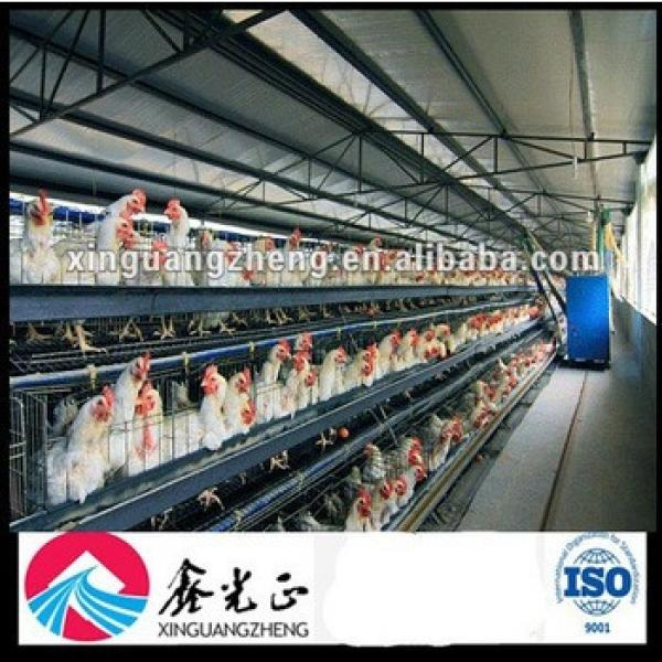 Controlled Chicken Poultry Shed Design #1 image