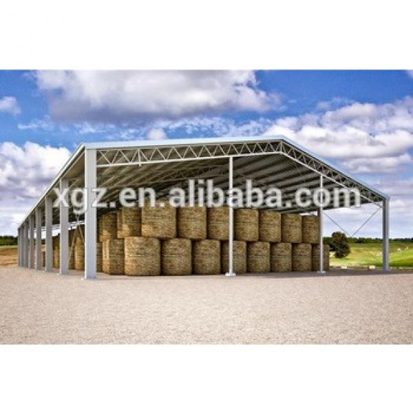 Galvanized Prefabricated Light Steel Structure Hay Warehouse Shed #1 image