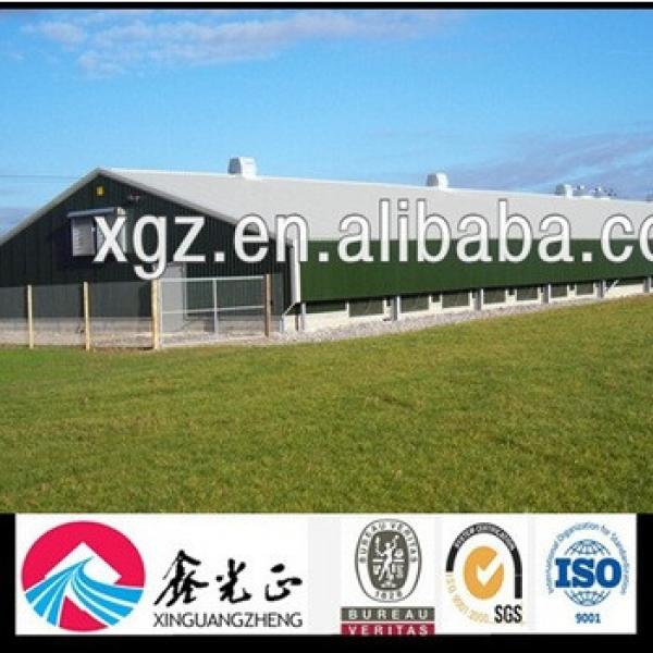 Prefabricated Steel Structure for Chicken House #1 image
