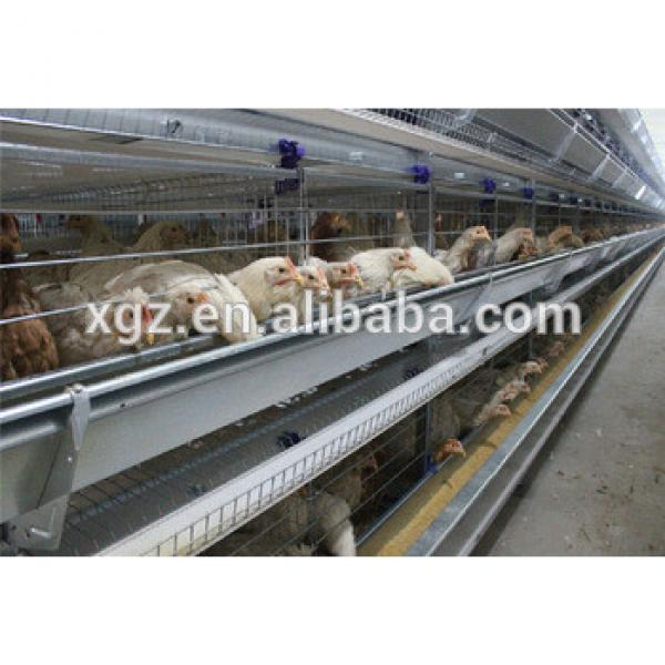 cheap chicken egg poultry farm layer chicken house with automatic equipments #1 image