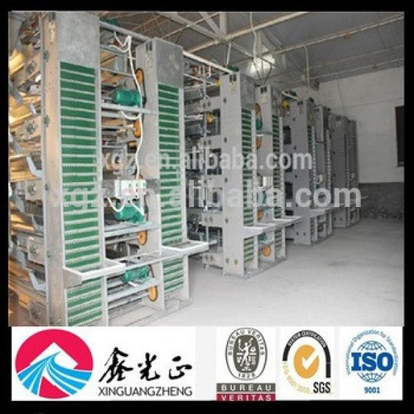 automatic equipment chicken egg equipment poultry farming #1 image
