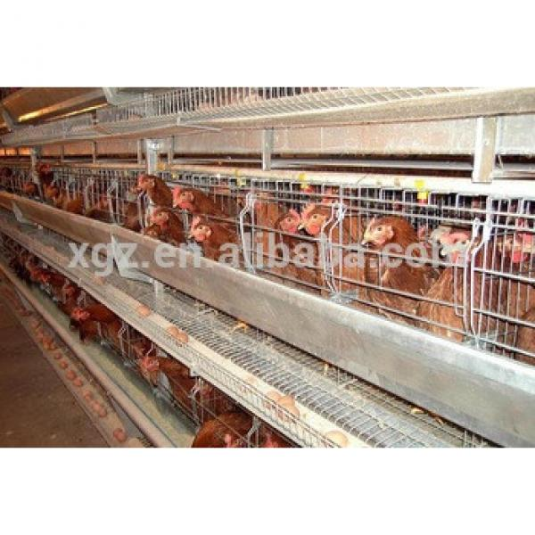 made in china Ground broiler poultry farm equipment #1 image