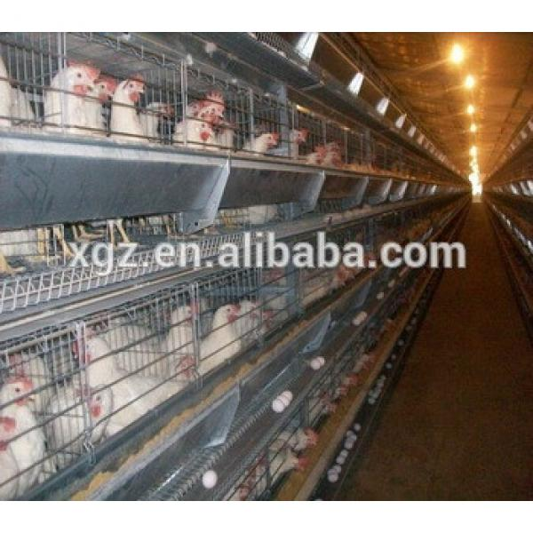 chicken farm building cheap chicken house commercial chicken house #1 image