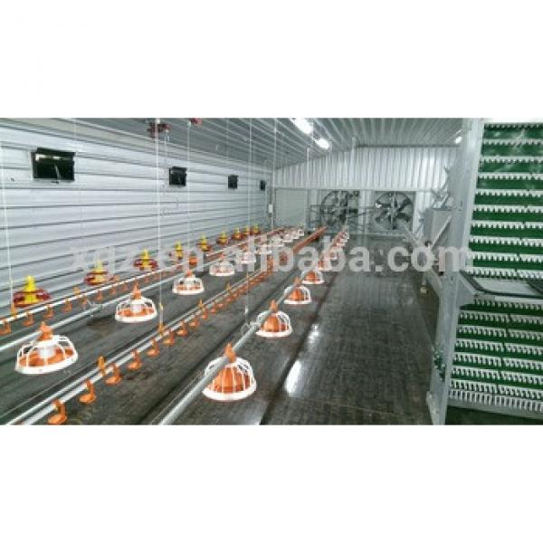 cheap best price high quality broiler farm chicken poultry shed design #1 image