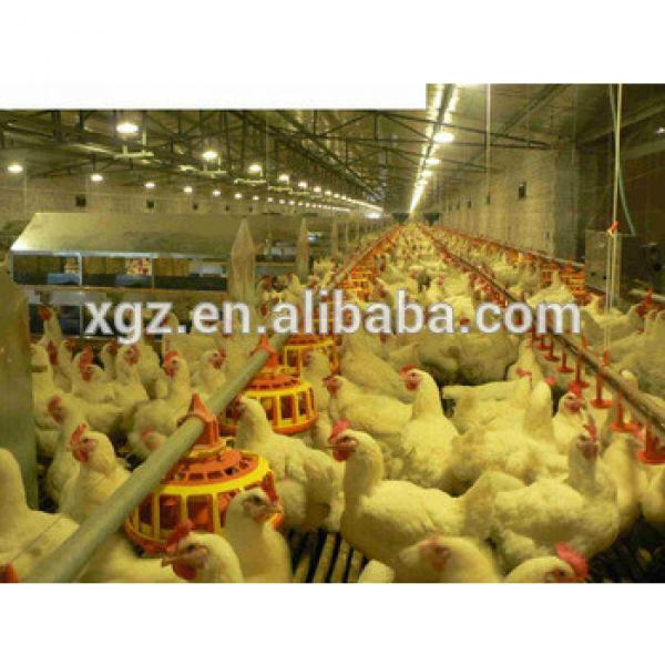 Best selling Chinese poultry house design with poultry house equipment #1 image