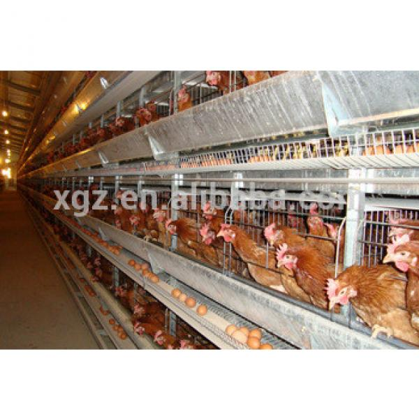 china cheap prefabricated steel structure chicken farm building #1 image