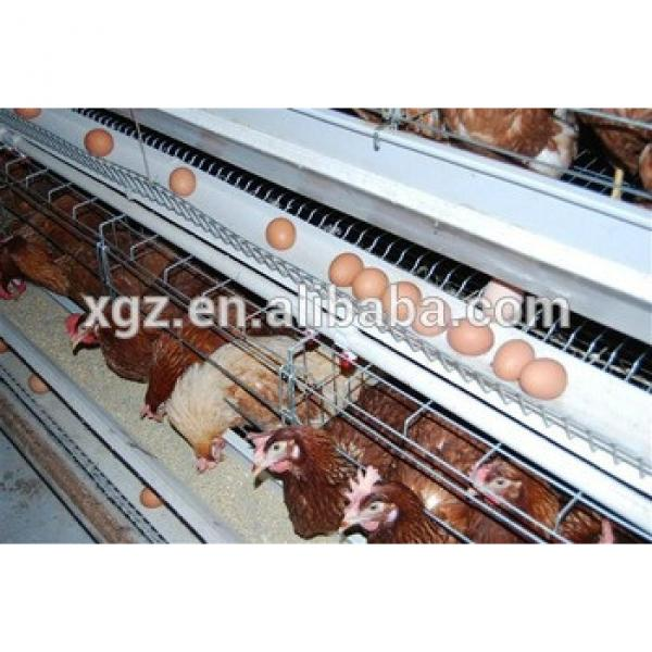 Cheap steel structure types of poultry house #1 image