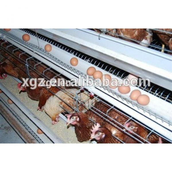Prefab Steel structure poultry house for Africa #1 image