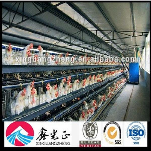 Automatic Poultry Chicken Farm Equipment #1 image