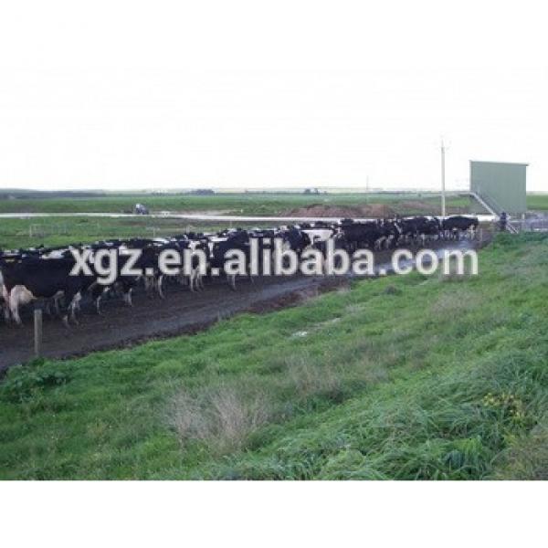 low cost advanced design cow farm building automtic equipments #1 image