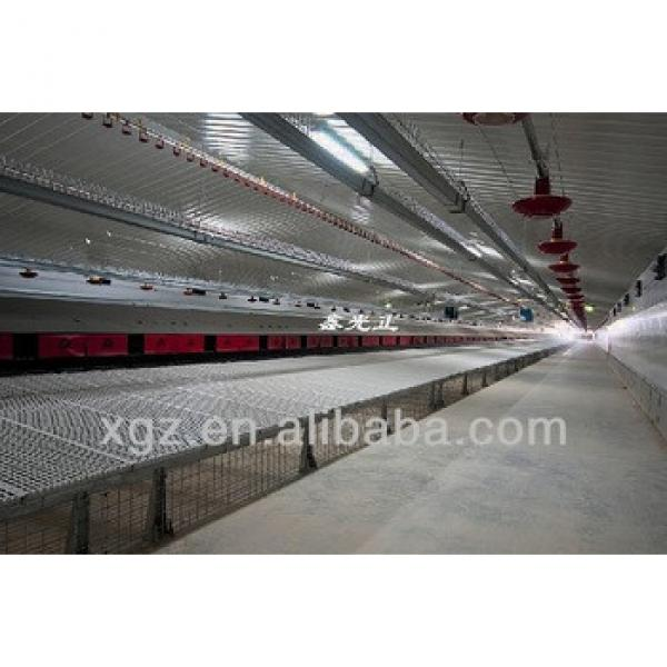best price automatic cage for growing broiler for algeria #1 image