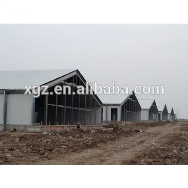 Chicken Poultry House Design and Equipments For Sale #1 image