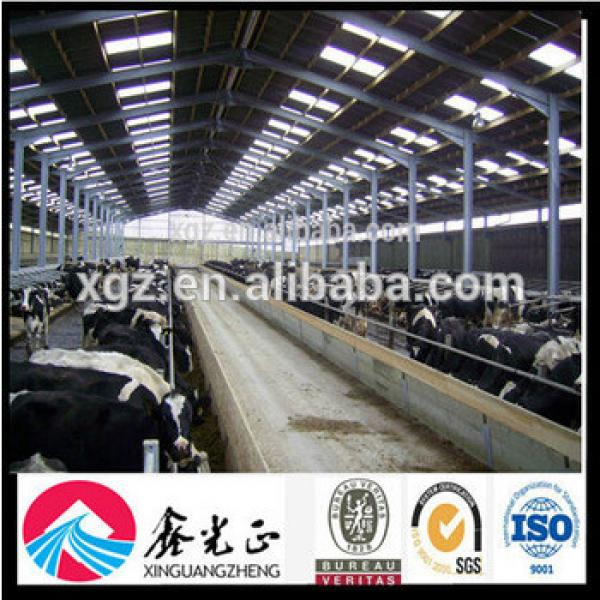 Prefabricated Cow Cattle Shed for Poultry Farm #1 image