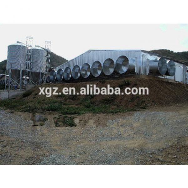professional design modern automatic steel structure chicken farm #1 image