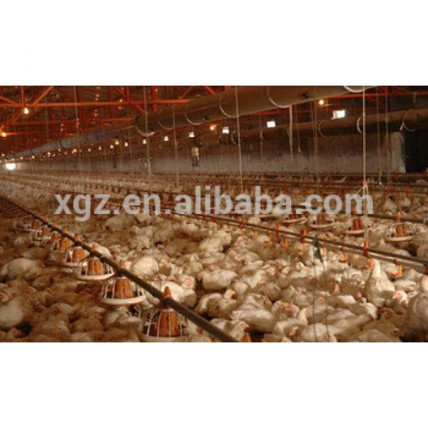 low cost steel structure commercial chicken house for broiler #1 image