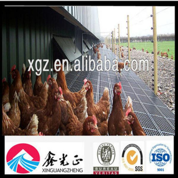 Chicken Poultry Farm with Equipment #1 image